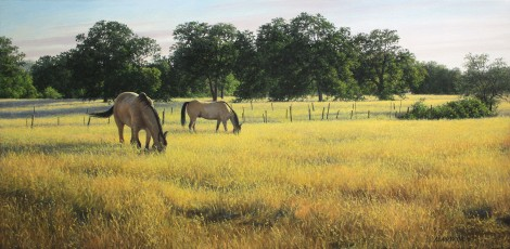 NICHOLS RANCH (study), 15×30 (sold)