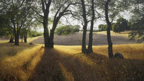GOLD COUNTRY, 24×42 (sold)