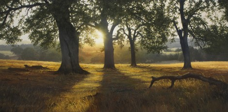 McCOURTNEY SUNRISE, 15×30 (sold)
