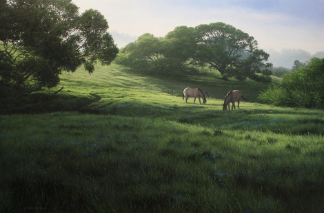 OLEMA VALLEY DEW, 24×36  (sold)