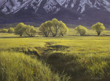 ROUND VALLEY SPRING, 9×12 (available at Sugarman-Peterson Gallery, Santa Fe)